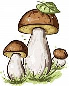 Three mushrooms with green leaf