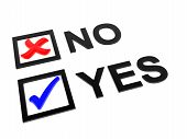 Check Yes No