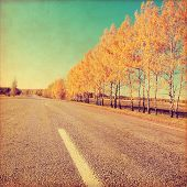 Grunge image of empty country road in autumn time.