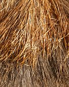 Thatched Roof Background Or Texture