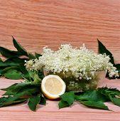 stock photo of elderberry  - Elderberry flowers and lemons on the table - JPG