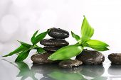 Spa stones, leaves, bamboo branches flooded with water surface on light background