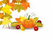 Thanksgiving celebration banner . Vector