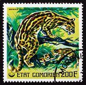 Postage Stamp Comoros 1977 Ocelot, Dwarf Leopard