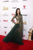 LOS ANGELES - OCT 10:  Edy Ganem at the 2014 NCLR ALMA Awards Arrivals at Civic Auditorium on October 10, 2014 in Pasadena, CA