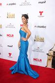 LOS ANGELES - OCT 10:  Ana Ortiz at the 2014 NCLR ALMA Awards Arrivals at Civic Auditorium on October 10, 2014 in Pasadena, CA