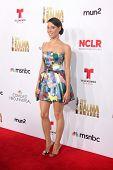 LOS ANGELES - OCT 10:  Aubrey Plaza at the 2014 NCLR ALMA Awards Arrivals at Civic Auditorium on October 10, 2014 in Pasadena, CA