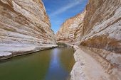 Unique canyon in Israel - En - Avdat. Striped sandstone walls and a cold stream. In the water reflected the canyon walls and sky