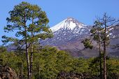 Tenerife - Teide volcano landscape. Beautiful nature scenery from Teide national park, Canary Islands, Spain.