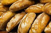 Many Brown Rustic Fresh Rye Bread Loaves