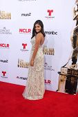 LOS ANGELES - OCT 10:  Maria Mesa at the ALMA Awards Arrivals 2014 at Civic Auditorium on October 10, 2014 in Pasadena, CA