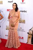 LOS ANGELES - OCT 10:  Vanessa Vasquez at the ALMA Awards Arrivals 2014 at Civic Auditorium on October 10, 2014 in Pasadena, CA