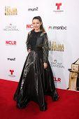 LOS ANGELES - OCT 10:  Fatima Ptacek at the 2014 NCLR ALMA Awards Arrivals at Civic Auditorium on October 10, 2014 in Pasadena, CA