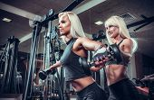fitness women doing exercises with dumbbell in the gym. Fitness girls in black sport wear with perfect body performing biceps exercises