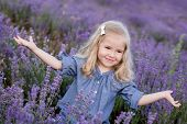 pic of lavender field  - happy little girl in a lavender field - JPG