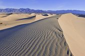 Dester landscape with Sand dunes