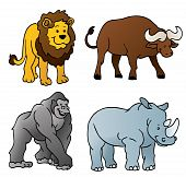 Safari Animals Vector Illustration