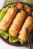 Spring Rolls Fried On A Plate Macro Vertical Top View