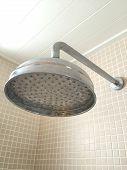 Big Silver Shower Head