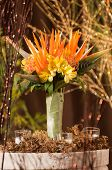 stock photo of bird paradise  - Bright orange, bird of paradise bouquet mix with yellow flowers.