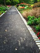 Path In A Colorful Summer Garden