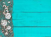 Sand dollars and shells in fish netting on teal blue wood beach sign