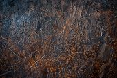 picture of wood pieces  - old wood background abstract textures piece of wood - JPG