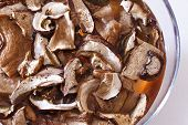 Dried Porcini Mushrooms To Soak
