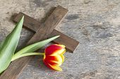 Spring tulip and cross abstract easter concept