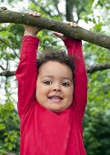 Child Hanging On A Tree Branch