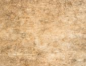 Close Up Wood Texture And Background