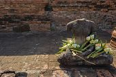 ?Headless Buddha with Lotus Flowers
