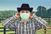 image of horse face  - Cowboy veterinarian has just put a surgical face mask - JPG