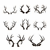 pic of antlered  - Vector deer antlers silhouette isolated on white - JPG