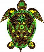 stock photo of sea-turtles  - Turtle a mammal - JPG