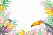 pic of tropical birds  - Watercolor background with tropical birds and flowers - JPG