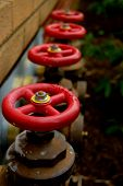 stock photo of spigot  - four red valves lined up in a row - JPG
