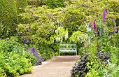 stock photo of english cottage garden  - White bench at the end of sandy path under white and blue wisteria surrounded by colourful cottage flowers and herbs on a summer day after rain romantic settings - JPG