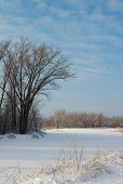 foto of february  - Winter forest and field covered by snow - JPG