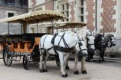 stock photo of carriage horse  - Horses pulling carriage buyout - JPG