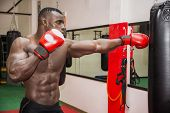 image of punch  - African black male boxer punching ball wearing boxing gloves in gym - JPG