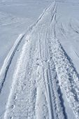 Skidoo Track In The Snow