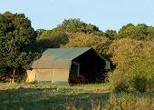 Luxury safari tent on Masai Mara