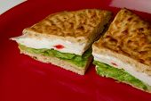 Delicious and Healthy Turkey Sandwich