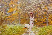 Cute Little Girl And Golden Retriever Dog With Bright Colored Leaves Walking In The Autumn Park poster