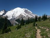 Mt. Rainier With Hiker