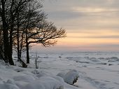picture of cold-weather  - Cold winter sunset on the coast of Finnish Bay - JPG