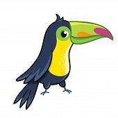 Cute Toucan On White Background. poster