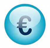 The Glassy Aqua Blue Euro Icon Button