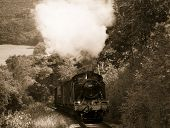 Steam Train In Sepia45
